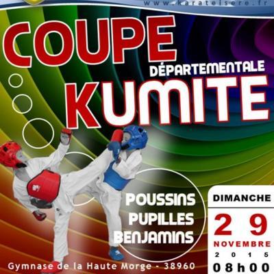 COUPE DEPARTEMENTALE COMBAT 29 11 2015