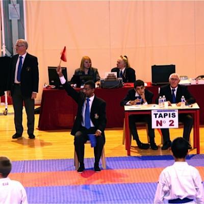 championnat de l'Isère kata 9 11 2014