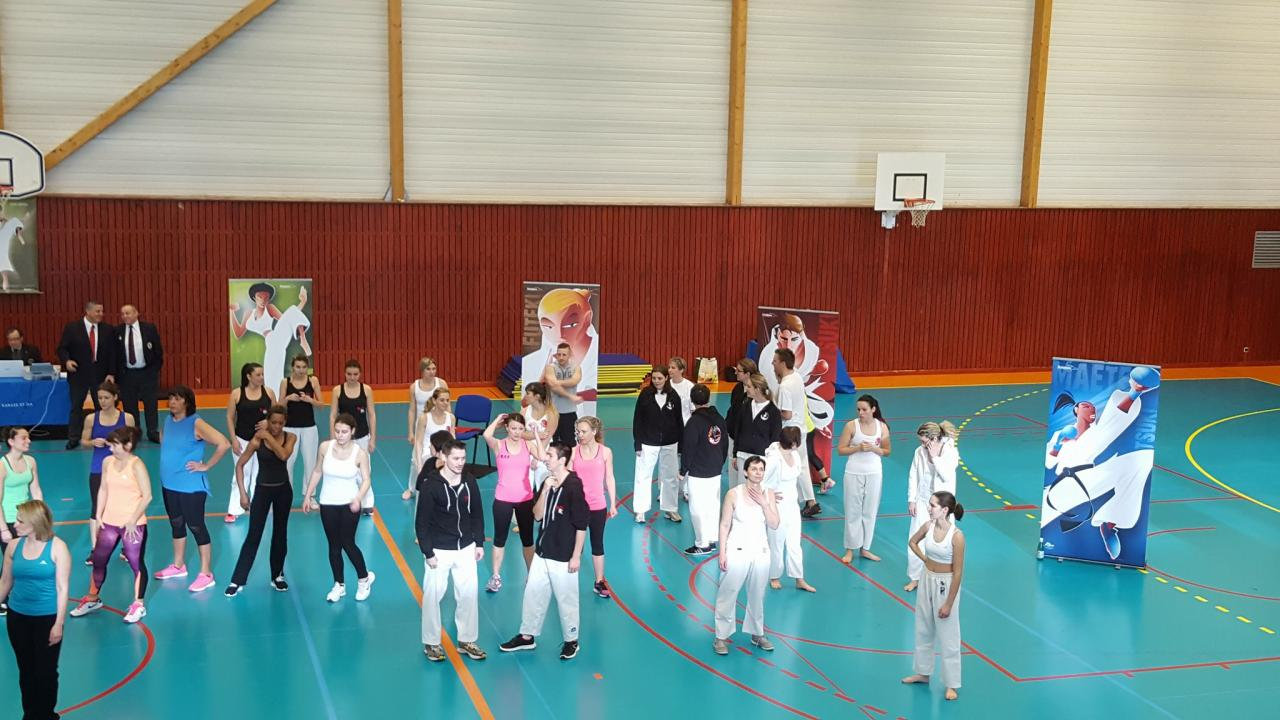 coupe régionale body karate 2017.jpg9