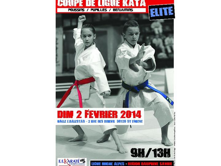 ligue kata 2 02 2014