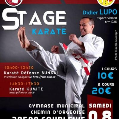 stage Didier luppo Coublevie 8 11 2014
