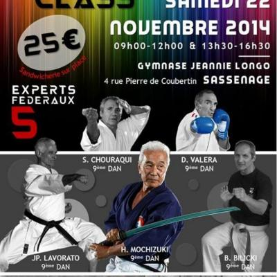 Stage experts  22 11 2014