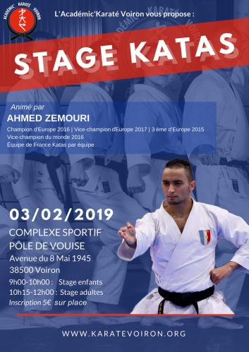 Stage katas 3 fevrier 2019